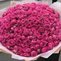 Большой букет 101 ветка пионовидных роз с оформлением R891