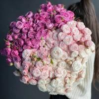 Букет 101 кустовая пионовидная роза микс R1941
