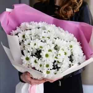 Букет 11 веток белой ромашковой хризантемы с упаковкой R1227