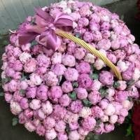 101 розовый пионов в корзине R952