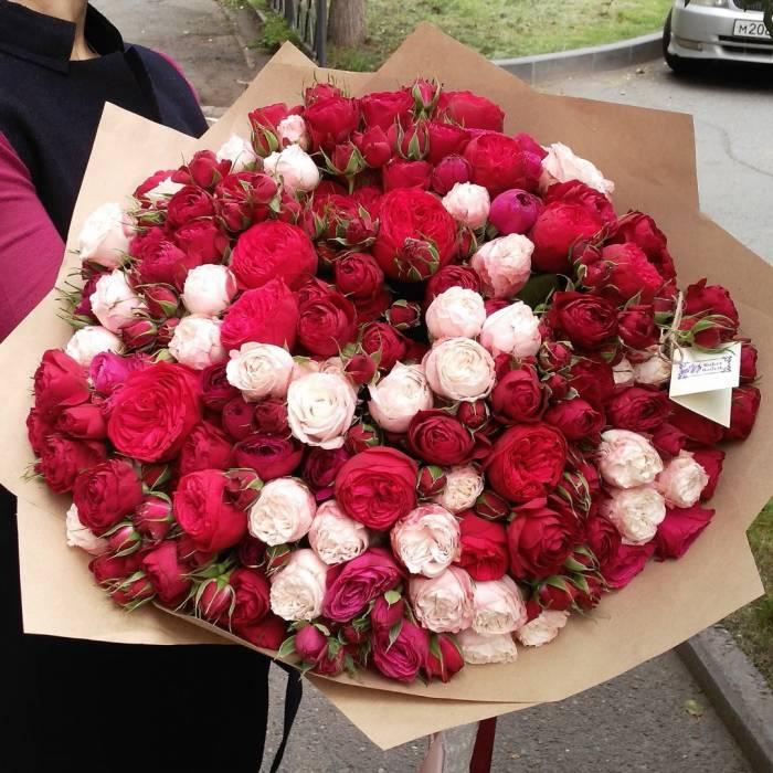 101 пионовидная роза с упаковкой R036