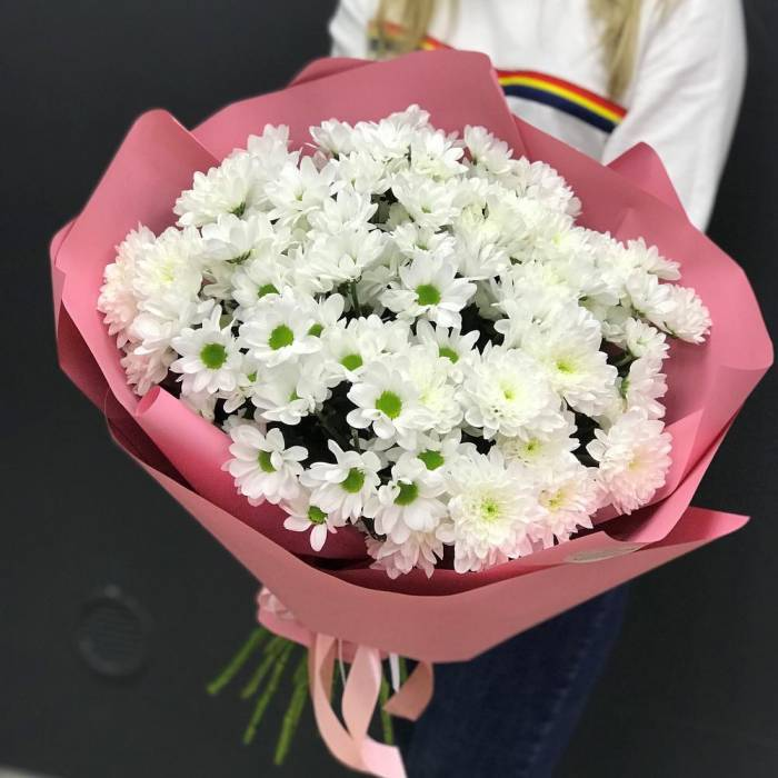 Букет 15 веток ромашковой хризантемы R1125