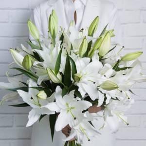 Пышный букет 15 веток белой лилии с лентами 1503