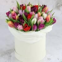 79 тюльпанов ассорти в коробке R003