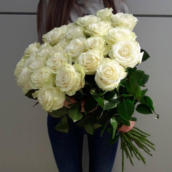 Букет 15 высоких роз R522