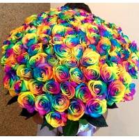 Крупные радужные розы с лентой R011