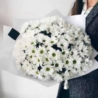 Букет 25 веток хризантемы в упаковке R005