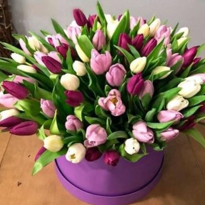 59 разноцветных тюльпанов в коробке R017