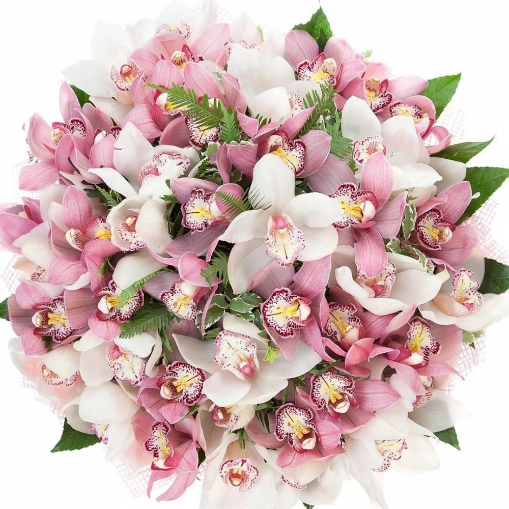 картинки букетов орхидеи элементом